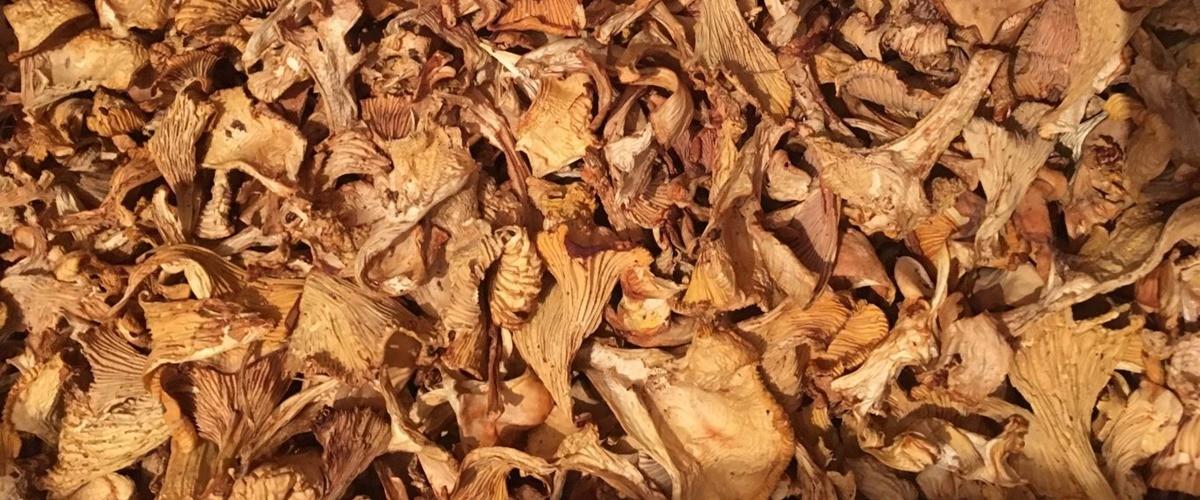 Voveraičių džiovinimas orkaitėje